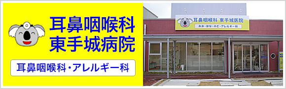 耳鼻咽喉科 東手城医院